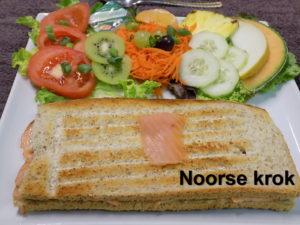 krok Noors